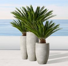 RH's Vetro Planter:Our planter's classic oblong shape gains textural interest from the horizontal bands and diagonal and vertical lines etched into its surface. Lightweight but substantial, it's an artful combination of pattern and form. Large Backyard Landscaping, Backyard Pool Designs, Tropical Landscaping, Landscaping With Rocks, Large Outdoor Planters, Patio Planters, Outdoor Plants, House Plants Decor, Plant Decor