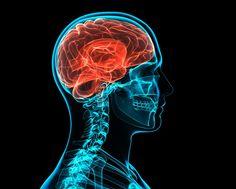 Gehirn, Geist, Schädel: Wie entstehen Depressionen?