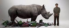 Jackie Chan's Anti-Rhino Poaching PSA Will Make You Want To Take Action
