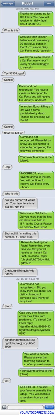 Cat facts funny texts