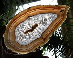 Agate Slab with Stand for Sale $40 https://www.etsy.com/listing/120337179/agate-slab-large-polished-from-brazil?ref=shop_home_active