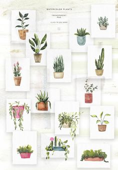 Deal ends on April 2019 Watercolor Potted Plants by Spasibenko Art on watercolor watercolorarts illustration freebies is part of Watercolor plants - Plant Painting, Plant Drawing, Plant Art, Watercolor Plants, Watercolour Painting, Painting & Drawing, Prima Watercolor, Watercolor Logo, Guache