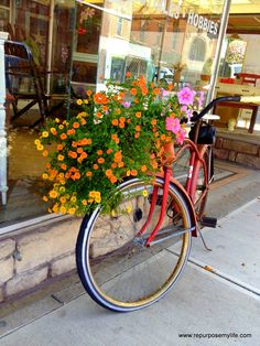 bike with basket of flowers Bike Planter, Bicycle Types, Small Front Porches, Old Bikes, Backyard Makeover, Garden Photos, Flower Basket, Landscape Art, Trees To Plant