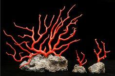 R - Rami di corallo rosso su base di roccia lavica disponibili in varie dimensioni e pesi a partire da gr 5.