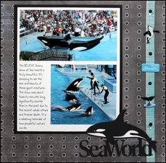 sea world scrapbook pages - Google Search