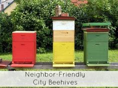 keeping bees in the city without upsetting your neighbors  with neighbor friendly beehives