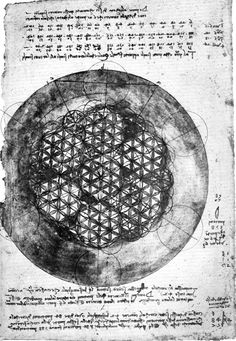 Da Vinci - Flower of Life Sketch. Leonardo da Vinci has studied the Flower of Life's form and its mathematical properties. He has drawn the Flower of Life itself, as well as components therein, such as the Seed of Life. Yi King, Life Tumblr, Life Sketch, Crop Circles, Golden Ratio, Flower Of Life, Sacred Geometry, Geometry Art, Occult
