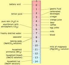 Acid vs Base Acid and base are chemistry terms which refer to different potentialities of chemical substances. An acid, in chemistry, is usually a liquid, that Cooking Videos Tasty, Cooking Recipes, Stomach Acid, Science Fair Projects, Science Experiments, School Projects, Dog Shampoo, Distilled Water, Kitchens
