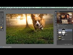 How to Make Colors Come to Life in Photoshop - YouTube