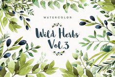 Watercolor Wild Herbs vol.3 by Spasibenko Art --> https://crmrkt.com/15rQO