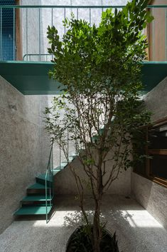 Gallery of Vy Apartments / H.a - 9 Green Garden, Tropical Garden, Staircase Handrail, Stairs, Vietnam, Garden Of Lights, Small Buildings, Building Exterior, Wooden Bar