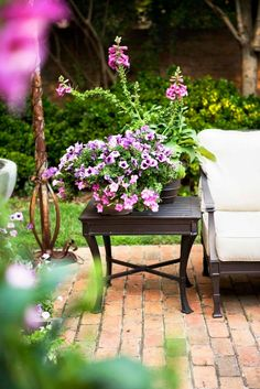 I am looking forward to Spring and planting pretty flowers once again.  I really like this color combo for my pots. French-Inspired Family Home