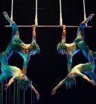 Espectáculo Varekai del Circo del Sol
