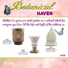 Wickless candles and scented fragrance wax for electric candle warmers and scented natural oils and diffusers. Shop for Scentsy Products Now! Scentsy Independent Consultant, Wax Warmers, House Smells, Smell Good, March 1st, Atrium, Lantern, Spring Summer, Fragrance