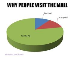 Why people in Pakistan & India go to the mall ...!! Desi problems