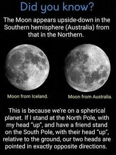 Moon: Did you know. - Ewww Meme - Moon: Did you know. The post Moon: Did you know. appeared first on Gag Dad. Cool Science Facts, Wtf Fun Facts, Physics Facts, Science Trivia, Physics Theories, Strange Facts, Science Jokes, Crazy Facts, Random Facts