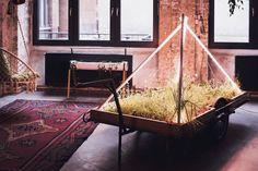 Hey Hey | grow via INFARM Indoor Farming · Berlin – iGNANT.de