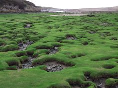 Ogmore-by-Sea, Wales