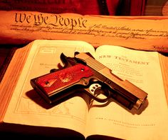 The San Diego Free Press Uses Facts & Truth For You NRA Gun Morons