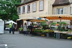 ... Bonjour Alsace: Wochenmarkt in Barr - marché hebdomadaire
