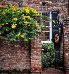 #Charleston #SouthCarolina #oldhouse #architecture #archilovers #flowers  #oldhouselove #garden #gate #architecturelovers #archilovers #archidaily #charlestonsc #charlestonpictures #explorecharleston #explorechs #discoversc #lowcountry #gardendecor