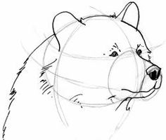 Dessine-Moi … Un uns - Zeichnungen Pencil Drawings Of Animals, Animal Sketches, Art Drawings, Urso Bear, Art D'ours, Bear Sketch, Bear Paintings, Nature Sketch, Bear Pictures
