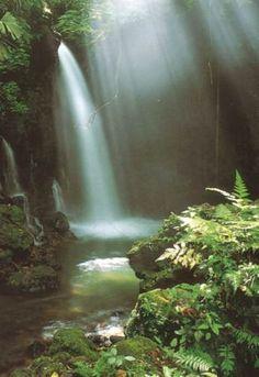 Google Image Result for http://4.bp.blogspot.com/_lb8nEdoEfmc/SwNXoQz1AqI/AAAAAAAAAJg/ZjJFJCe45PA/s1600/waterfall-10.jpg
