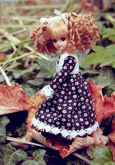 Cute Castle Licca with even cuter hair (1)