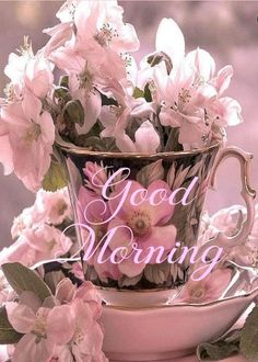 Explore the beautiful good morning image ideas Good Morning My Friend, Good Morning Coffee, Good Morning World, Good Morning Picture, Good Morning Messages, Good Morning Greetings, Good Morning Good Night, Morning Pictures, Good Morning Wishes