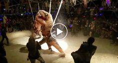Imagens Inéditas Mostram Interior De Clube De Luta Clandestina De Dinossauros