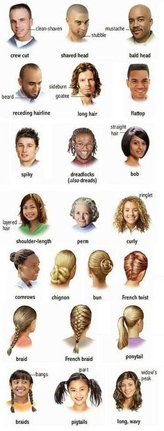 Hair Style Guide in English . - learning GO English Time, English Course, English Fun, English Writing, English Study, English Class, English Words, English Lessons, Learn English