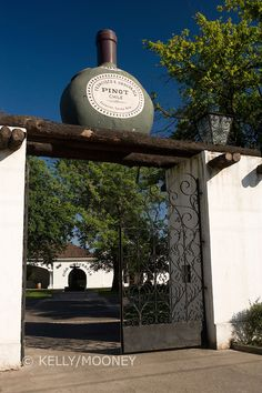 Winery and Vineyard Francisco Undurraga, Maipo Valley, Chile