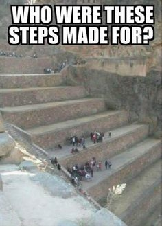 You need steps to get up the steps... :/