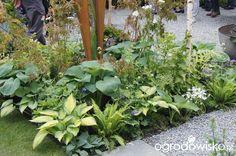 Ogród niby nowoczesny ale... - strona 1080 - Forum ogrodnicze - Ogrodowisko
