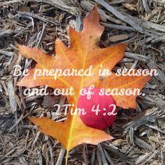 2 Timothy 4:2/2 Timóteo 4:2/1 Timóteo estudo bíblico / 2 Timóteo 4:2 / 2 Timóteo 4:02