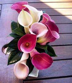 Bouquet de calas en tonos rosas y fucsias