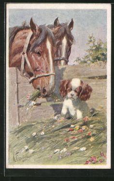 Vieux-artistes-AK-Karl-jour-ferie-chevaux-considerent-un-petit-chien-1935
