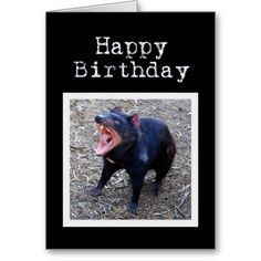 >>>best recommended          Tasmanian Devil Happy Birthday Greeting Card           Tasmanian Devil Happy Birthday Greeting Card This site is will advise you where to buyThis Deals          Tasmanian Devil Happy Birthday Greeting Card Online Secure Check out Quick and Easy...Cleck link More >>> http://www.zazzle.com/tasmanian_devil_happy_birthday_greeting_card-137283355306977652?rf=238627982471231924&zbar=1&tc=terrest