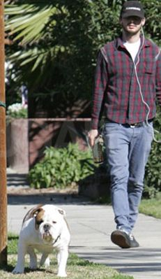 Bulldog Brando taking his celebrity dad, Shia LaBeouf (actor), for an afternoon stroll. As if I couldn't love him anymore....