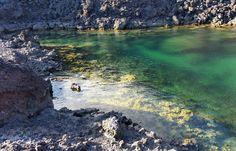 Tenerife, Free Mind, Island Food, Island Design, Beach Bars, Canario, Island Beach, Canary Islands, Best Hotels