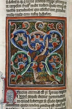 Catalogue reference: MS. Bodl. 764 Object: parchment manuscript [England] Title: bestiary Date: ~1225-1250 Image description: Hedgehogs and grapevine; carries grapes on its prickles.The Bodleian Library Medieval and Renaissance Manuscripts
