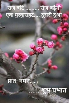 Good Morning Hindi Messages, Good Morning Beautiful Quotes, Hindi Good Morning Quotes, Good Morning Inspirational Quotes, Morning Greetings Quotes, Good Morning Images, Motivational Quotes, Saturday Morning Quotes, Good Morning Friday