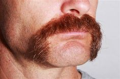 Hey, mustachioed men: Don't forget the point of Movember (Photo: Tom Grundy  /  featurepics.com)
