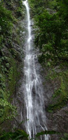 Les plus belles cascades de Martinique – Carnet d'un Antillais Les Cascades, Waterfall, Outdoor, Pathways, Beauty, Travel, Recipe, Outdoors, Waterfalls