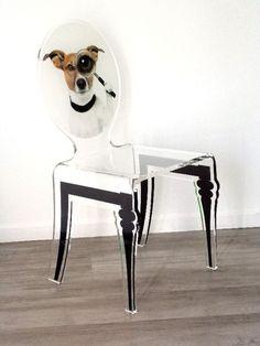 Chaise verre acrylique Graph pieds plexi chien - Acrila