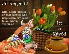 Good Morning, Picnic, Basket, Easter Activities, Buen Dia, Bonjour, Picnics, Good Morning Wishes