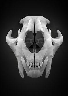 Skulls by Martin Capovcak, via Behance
