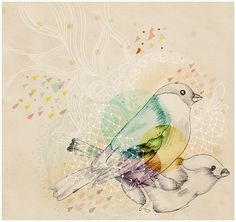 pretty bird illustration