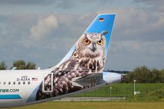 Frontier Airlines Airbus A321-211 N701FR 'Otto the owl'