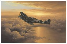 Freedom - Aviation Art by Neil Hipkiss Aviation Artist Ww2 Aircraft, Fighter Aircraft, Military Aircraft, South African Air Force, Old Planes, The Spitfires, Dark Summer, Aircraft Painting, Supermarine Spitfire